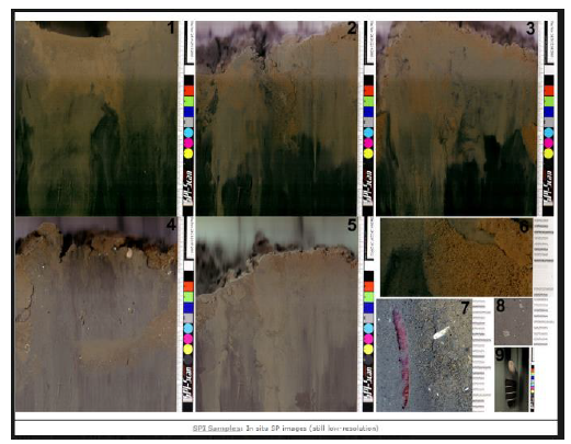 Figure 6: Example sediment profile images from Benthic Science Limited's SPI-Scan Surveyor.
