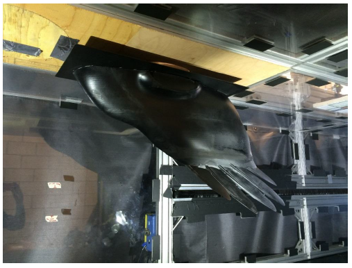 Figure 22. Final aerodynamic test model mounted in the Cal Poly low speed wind tunnel. Side